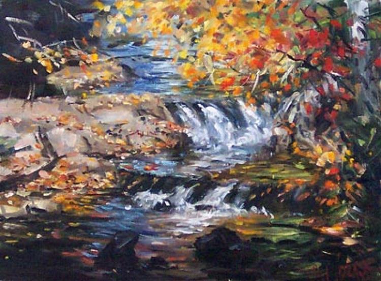 Waterfall & Fall Colours