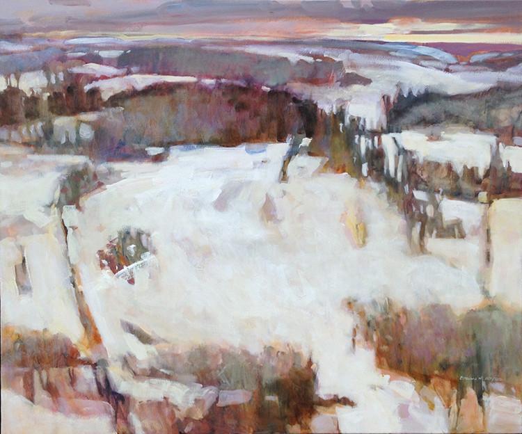 ATY 1039 Winter Fields